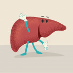 happy liver illustration